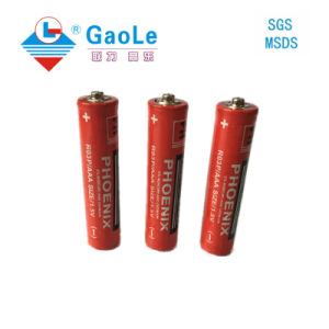 Extra Heavy Duty AAA 1.5V R03 Battery pictures & photos