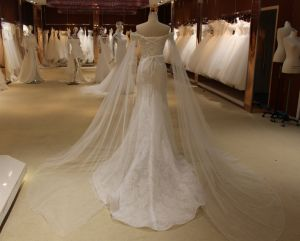 Mermaid High Quality Wedding Dress with Shawl pictures & photos
