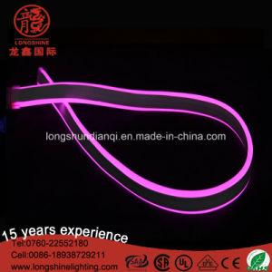 LED High Brightness 220V/110V Blue Flexible Neon Light for Outdoor Sign Decoration pictures & photos