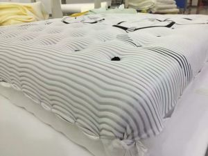 Roll and Vacuum Compress Packing Mattress for Wholesale pictures & photos