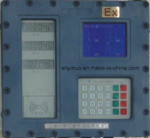 Carbine Type Batch Controller (PSYN-400) pictures & photos