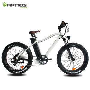 500W New Fat Tire Mountain Electric Bike with Reasonable Price and Brand Parts pictures & photos