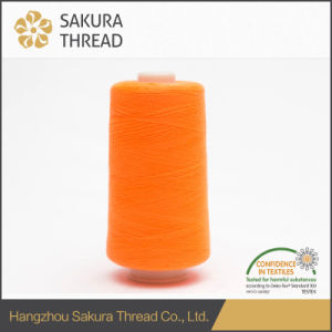 Eco-Friendly Flame Retardant Sewing Matt Embroidery Thread for Home Textile pictures & photos