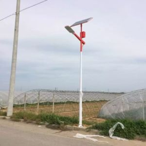 Prices of 20W Solar Street Lighting with 5m Pole pictures & photos