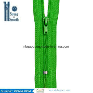 Professional Factory Hot 100% Nylon Zipper for Hotsale pictures & photos