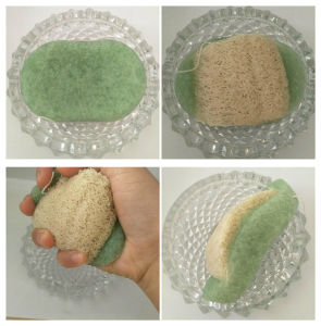 100% Natural Loofah Konjac Sponges for Cleansing pictures & photos