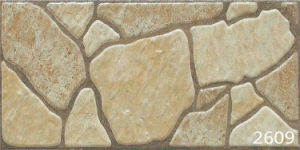 Porcelain Brown Natural Granite Stone Mosaic Exterior Wall Tile (200X400mm) pictures & photos