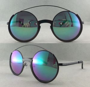 Ce Fashionable Style OEM Sunglasses