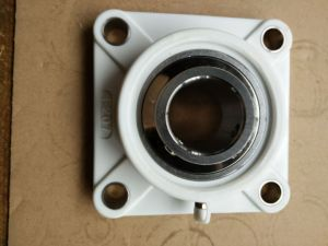 Plastic Housing Two-Bolt Flange Bearing Units with Insert Bearing (SUCFLPL206) pictures & photos