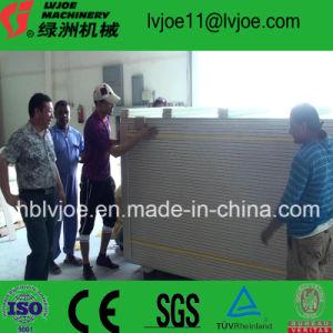 Gypsum Plaster Panel Manufacture Machines pictures & photos