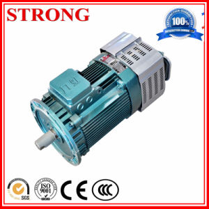 Metal Industry Construction Hoist Motor for Construction pictures & photos