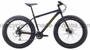 Fat Tire Mountain Bicycle Bike/Chopper Beach Cruiser Bicycle Bike/4.0 Fat Tire Beach Cruiser Bicycle Bike/Fat Tire MTB Bike/ Fat Tire Bike pictures & photos