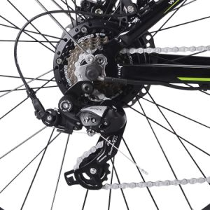 New Brushless Motor Electric Mountain Bike pictures & photos