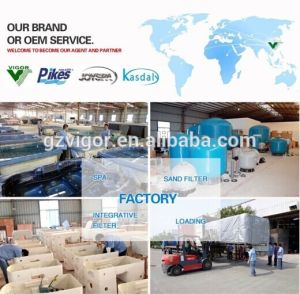 Swimming Pool Sand Filter Equipment Made in China Water Filter pictures & photos