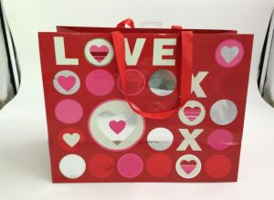 Custome Printing Shopping Paper Bags/ Gift Paper Bags