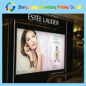 Advertising Light Box Film Printing, Backlit Light Box Film pictures & photos