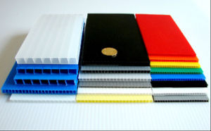 Colored PP Hollow Sheet pictures & photos