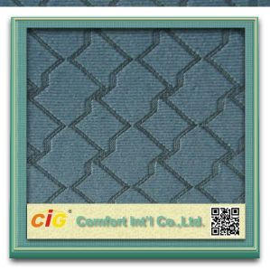100% Polyester Knitting Jacquard Fabric for Auto pictures & photos