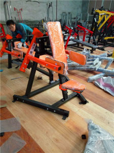 Commercial Use Hammer Strength Lateral Raise Machine pictures & photos