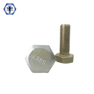 Heavy Hex Structural Bolts A325m 8s Zinc Plated