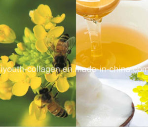 Honey,Top 100% Pure Natural Rape Honey, Anticancer, Beauty Skin, Promote Sleep,Antiagingno Pollution, No Heavy Metal,No Antibiotics, Prolong Life,Health Food pictures & photos