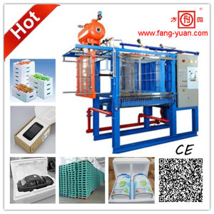 Fangyuan Hot Sale EPS Bicycle Helmet Foam Padding Machine pictures & photos