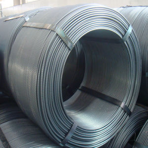 Steel Wire Rod / Coil