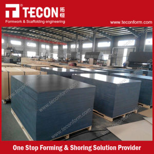 Tecon Special 4*8 Plywood pictures & photos