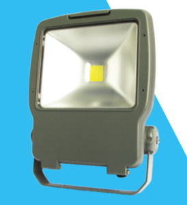 China Experienced Supplier of LED Flood Light pictures & photos