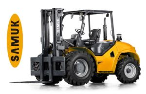 2WD Rough Terrain All Terrain Forklift 4.0-5.0ton pictures & photos