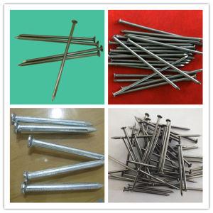 Hot Sales! ! Pre-Galvanized Concrete Nails/Nails pictures & photos