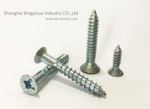 Self-Tapping Screw, DIN, ANSI, Asme pictures & photos