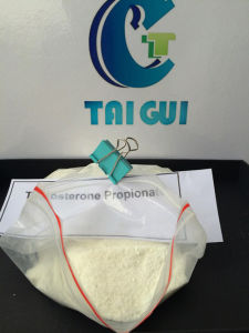 GMP Bodybuilding Supplements Steroids Powder Testosterone Propionate pictures & photos