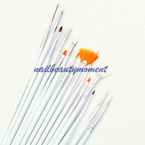 Nail Art Beauty Brush Manicure Drawing Tool 15 PCS (B004) pictures & photos