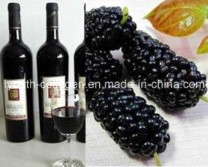 EU Organic Wild Mulberry Fruit Wine, Rich Anthocyanin, Resveratrol, Anticancer, Antiaging, Blood Tonic, Nourishing Kidney, Prevention Ische pictures & photos