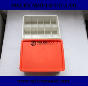 Plastic Injection Organizer Box with Lid Molding pictures & photos