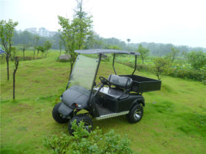 2 Seats Electric Utility Vehicle with Cargo Box pictures & photos