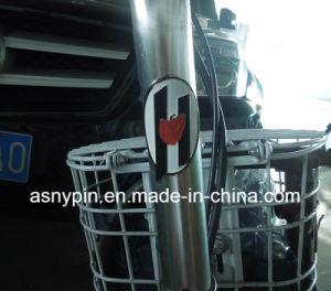 Customized Bike Badge Bike Head Tube pictures & photos