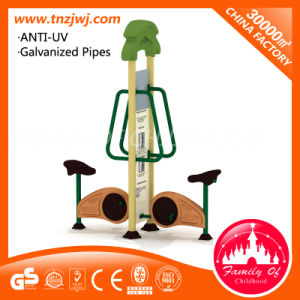 Factory Manufacture Outdoor Fitness Play Gym Equipment for Sale pictures & photos