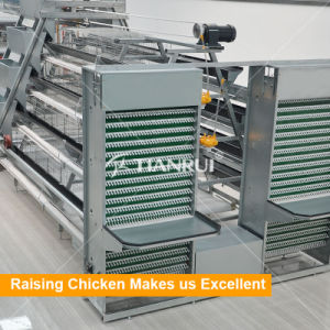 Factory Price A type and H type Chicken Battery Cages for Laying Hens pictures & photos