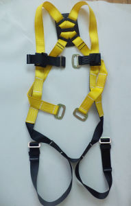 ANSI Full Body Harness Je113048 pictures & photos