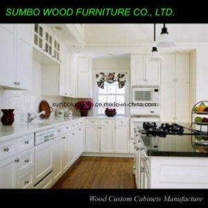 Modern Shaker Style Kitchen Cabinet (SBK-033)