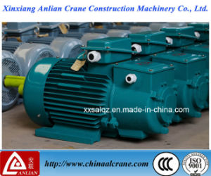 The Three Phase Electric AC Crane Motor pictures & photos