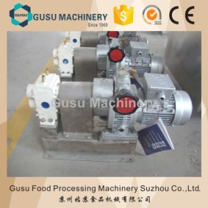 Ce Snack Machinery Chocolate Delivery Pump Made in China (SJB25) pictures & photos