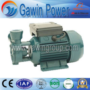 dB Series Electric Clean Water Pump for Home and Agriculture pictures & photos