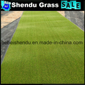 30mm Most Popular Landscape Artificial Grass pictures & photos