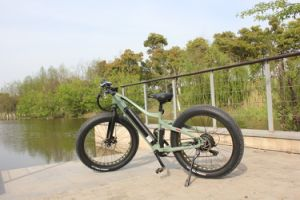 Alloy Frame Fat Tire Electric Beach Bike with Suspension pictures & photos