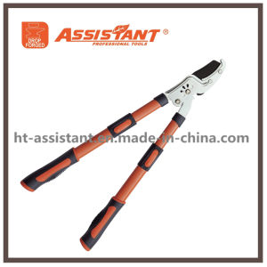 Garden Lopping Shears Ratchet Pruning Anvil Hand Loppers pictures & photos