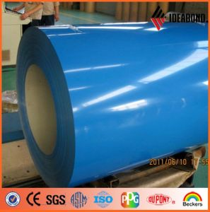 Polyester Indoor Decoration Material Coil (AE-31A) pictures & photos