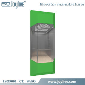 Best Selling Panoramic Wheelchair Elevator Cabin Design pictures & photos
